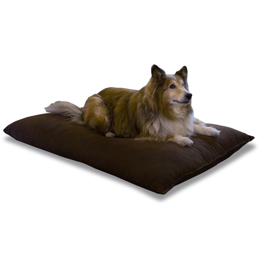 Orthopedic Pet Bed - Latex and Organic Cotton
