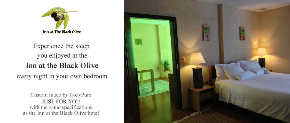 The Inn at the Black Olive Luxury Boutique Hotel Package